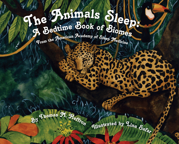 Coloring Pages Of Sleeping Animals : Bedtime stories sleep education